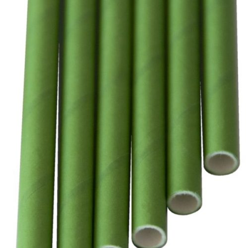 Paper Straw GLORIA Solid green (6x200mm) - Remaining stock